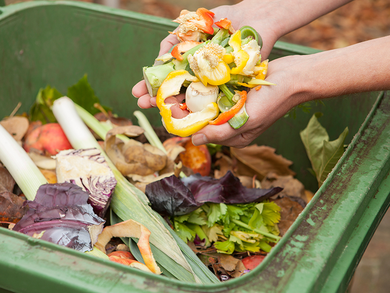 Organic Food Waste recycling.